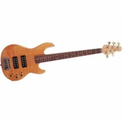 large G L L 2500 string Bass
