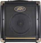 peavey E20  medium2